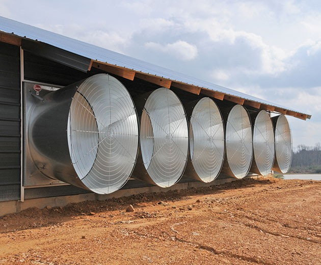 Ventilation Systems | Cumberland Poultry